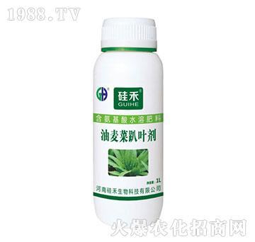 油麦菜趴叶剂-含氨基酸