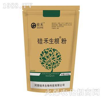 硅禾生根粉
