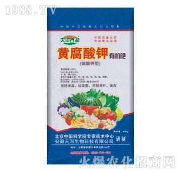 黄腐酸钾有机肥-天河百润