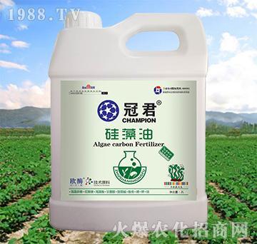 硅藻油-冠君-住商红福