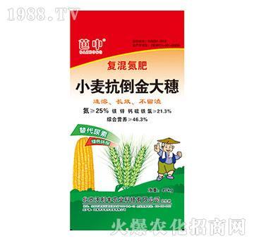 小麦抗到金大穗(复混氮肥)-芭中