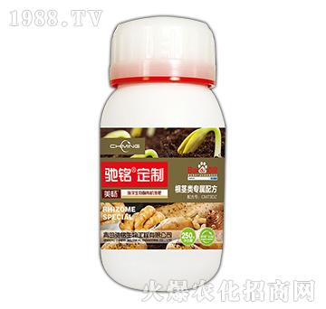 根茎专用肥-海洋生物菌