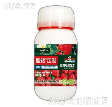 草莓专用肥-海洋生物菌有机液肥-驰铭定制