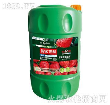 草莓专用肥4kg-驰铭定制