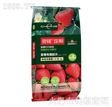 碳基微生物菌剂(草莓专用肥)-驰铭定制