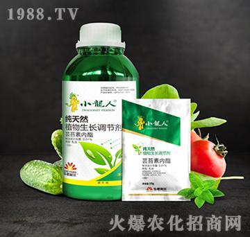 纯天然植物生长调节剂-