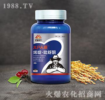 80%烯啶・吡蚜酮-大