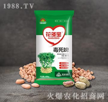 0.5%毒死蜱-花多宝-弘星利尔
