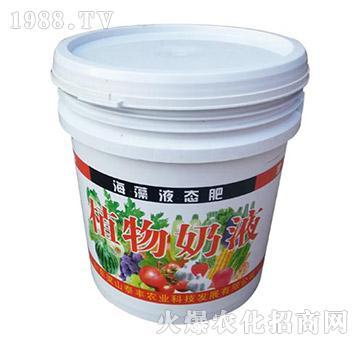 海藻液态肥-植物奶液-