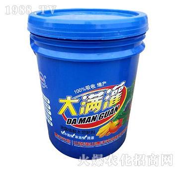 含腐植酸水溶肥-大满灌