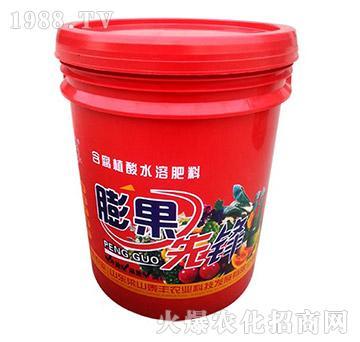 含腐植酸水溶肥-膨果先