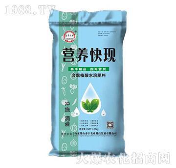 含腐植酸水溶肥-营养快