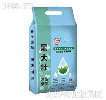 4kg含腐植酸水溶肥-