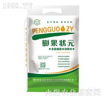 4kg含腐植酸水溶肥-膨果状元-梁山泰丰