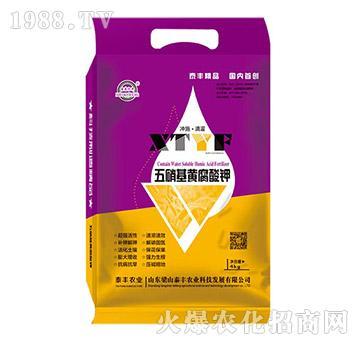 4kg五硝基黄腐酸钾-梁山泰丰