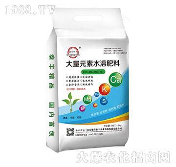 大量元素水溶肥15-6-30+TE-梁山泰丰