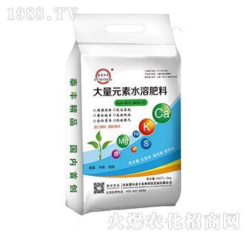 大量元素水溶肥20-10-30+TE-梁山泰丰