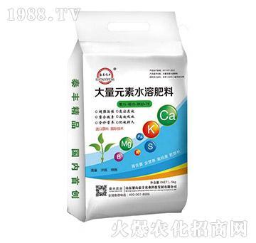 大量元素水溶肥15-15-30+TE-梁山泰丰