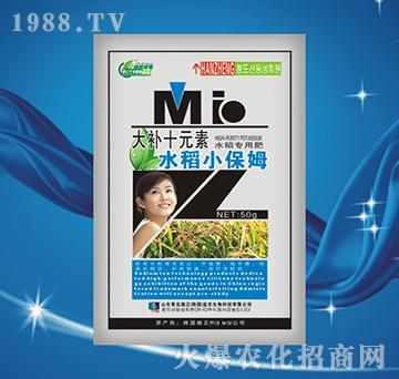 水稻小保姆-大补十元素