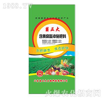 含黄腐酸冲施肥料-菌正大