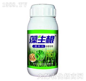 藻生根-水稻专用浸种剂