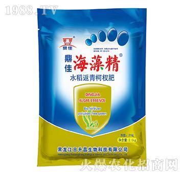 鼎佳海藻精2.5kg-水稻返青柯杈肥-日升昌