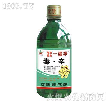 毒・辛-地虫菌虫一罐净-鼎瑞