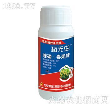 30%唑磷・毒死蜱-稻无虫-鼎瑞