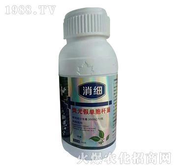荧光假单胞杆菌-消细-