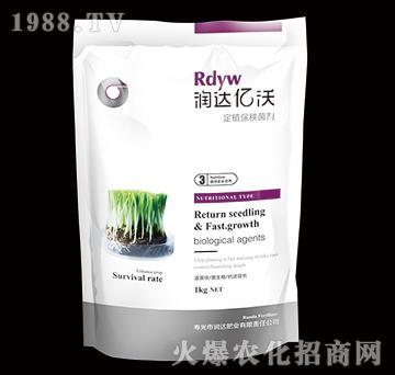 定植保秧菌劑-潤達億沃