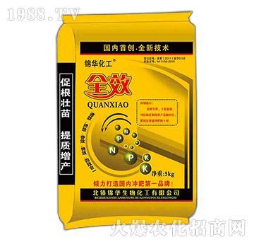 含腐殖酸水溶肥-全效-