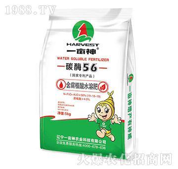 含腐植酸水溶肥19-18-19-碳酶56-一亩神