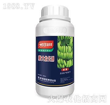 膨大拉长剂-香蕉营养高
