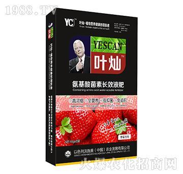 草莓专用氨基酸菌素长效