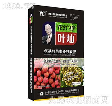 荔枝龙眼专用氨基酸菌素