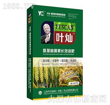小麦水稻专用氨基酸菌素