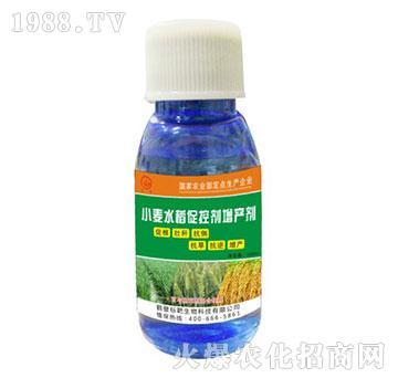 小麦水稻促控剂-标靶生物