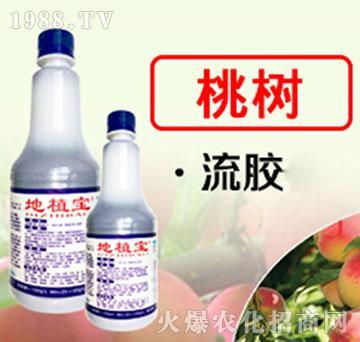 桃树专用地植宝-瑞禾生物