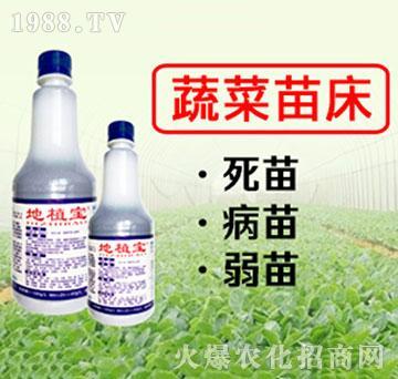 蔬菜苗床专用地植宝-瑞禾生物