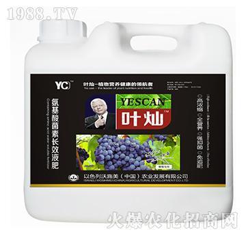 葡萄提子专用氨基酸菌素