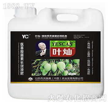 芒果专用氨基酸菌素长效