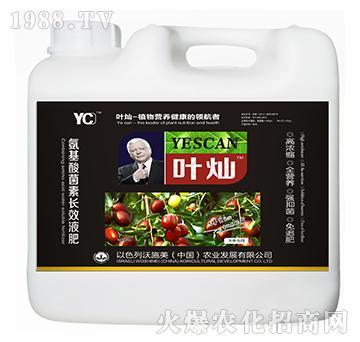 大枣专用氨基酸菌素长效