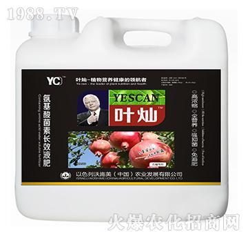 石榴专用氨基酸菌素长效