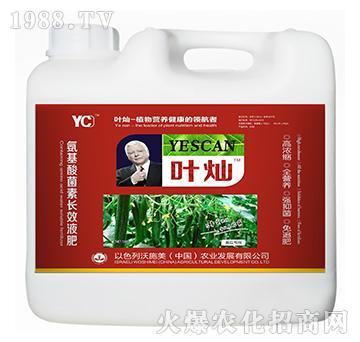 黄瓜专用氨基酸菌素长效
