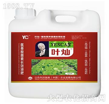 叶菜专用氨基酸菌素长效