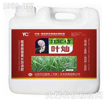 韭菜专用氨基酸菌素长效