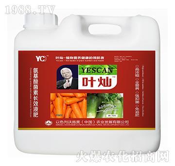 萝卜专用氨基酸菌素长效