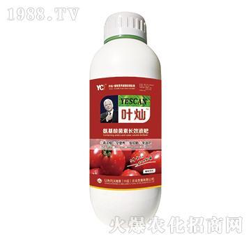 番茄专用氨基酸菌素长效