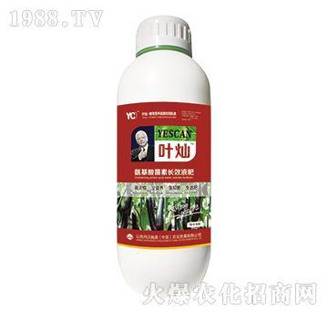 茄子专用氨基酸菌素长效