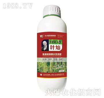 豆角专用氨基酸菌素长效
